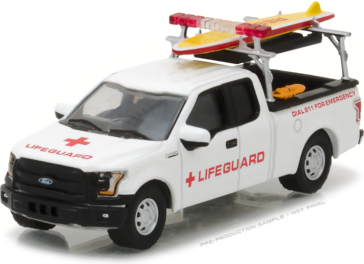 29899 - 2016 Ford F-150 with Lifeguard Accessories